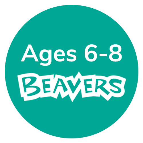 Beavers, aged 6-8, with Warwickshire Scouts